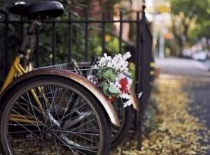 دوچرخه,گل,flowers,street,bokeh,photograph-b4ce0ca4d20b10256505ca54b454e408_h